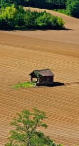 Erntehelferversicherung Landschaft