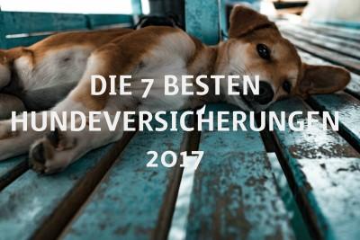 Die 7 besten Hunde-Versicherungen 2017_Titelbild