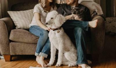 Frauchen und Herrchen sitzen mit ihrem Pudel und Kätzchen auf der Couch