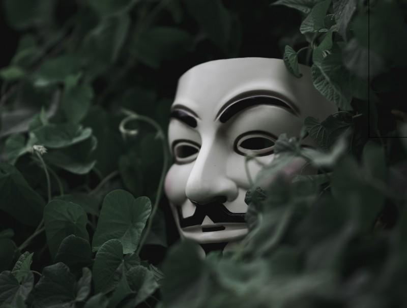 Guy Fawkes Maske im dunklen Busch