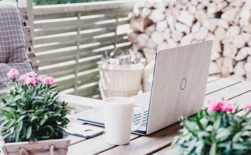 Ein Laptop steht auf einem Tisch mit Blumentöpfen